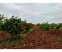 13 Acre Agriculture Land for sale at Sira - Tumkur