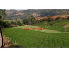1.25 Acres Tea Estate for sale near Doddabetta - Ooty