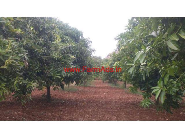5.5 Acres Mango Farm for sale near Vayalpadu Mandal - Tirupathy