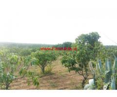1 Acre Beautiful mango farm land sale at Shoolagiri