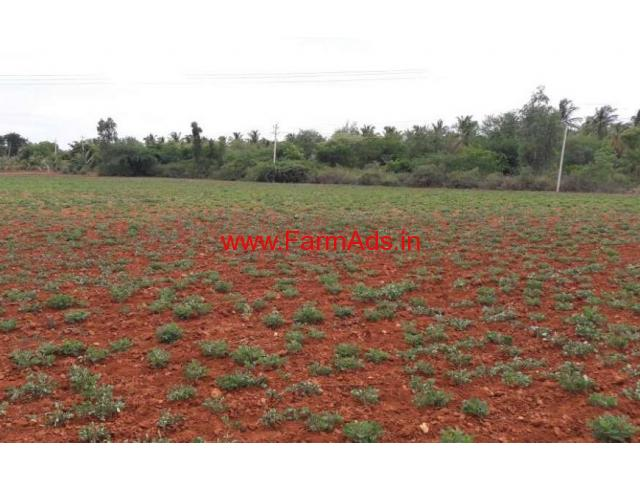 8 Acre Farm Land for sale in Sira - Tumkur