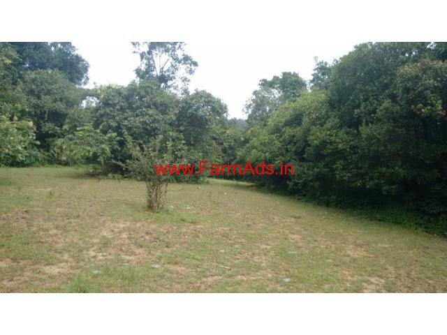 2.5 Acres Plain farm land for sale at 18 KMS from Mudigere town