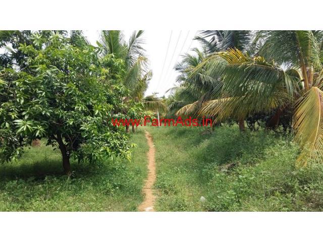 17 Acres Mango Farm for sale at Rajapalayam - Virudhunagar