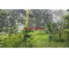 5 Acres Coffee Estate for sale near Madikeri -- Coorg