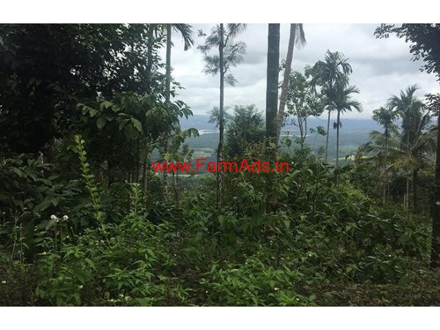 1 Acre Farm Land for sale in Wayanad - Mandad