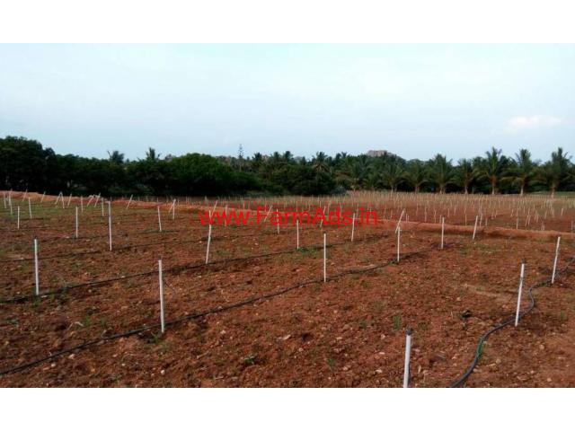 2.40 Acres Farm land for sale near Shoolagiri - Hosur