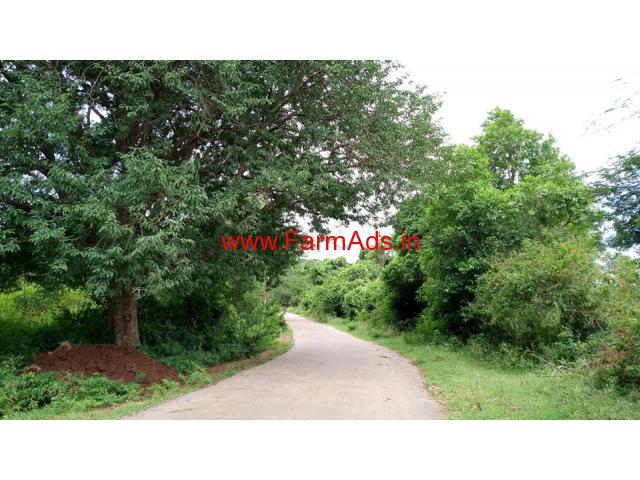 37 Gunte Farm Land for sale near Mysore