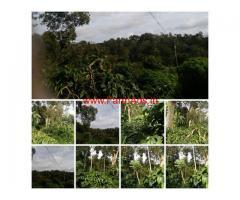 8 Acres Arabica Coffee Estate for sale in Chikmagalore