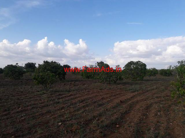 31 Acres Cheap Agriculture Land for sale near Sira