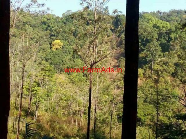 5 Acres Farm Land for sale in Meppadi - Wayanad