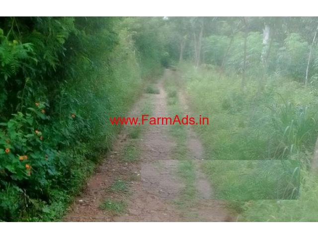 3 acre land for sale at in Nadavayal - Wayanad