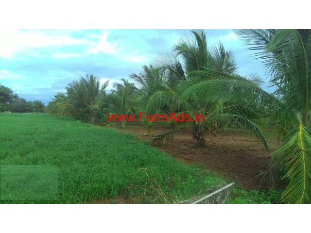 1 Acre Cocunut Farm Land for sale at Dabbegatta - Turvekere