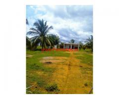 100 Acre Farm land for sale at Kodigehalli - Madhugiri