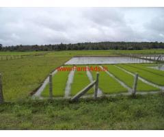1.20 Acres Agriculture Land for sale near Kakanakote - Hunsur Road