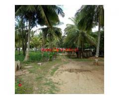 6 Acre Developed Farm Land for sale on Hullalli - Nanjangud Highway
