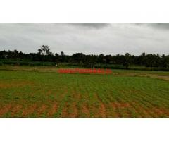 3.10 acres agriculture land for sale Near nanjangud.