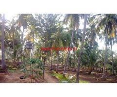 7 Acres Farm Land Kozhinjampara Circle Chittur Taluk Palakkad District