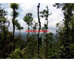 I acre Land for cheaper price for sale  in Padichira - wayanad