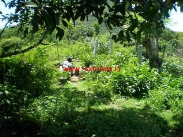 20 coconut farm for sale in senkottai-