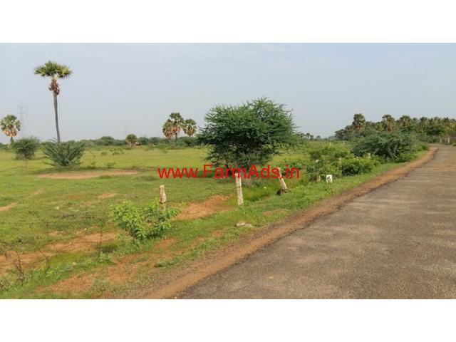9 Acres Very cheap agriculture land for sale near Tirunelveli