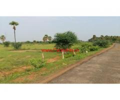 9 Acres Very cheap agriculture land for sale near Tirunelveli