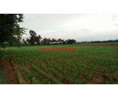 16 Acres Agricultural Land for sale at Kollegala, Bandhalli Post