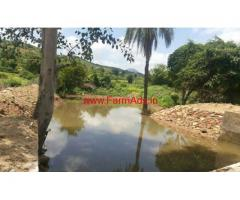 12.5 Acres Farm land for sale at Madanapalle