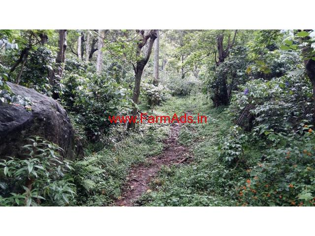 55 Acres Cheap coffee estate for sale near Bodi, Tamil nadu
