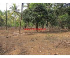 24.5 Acres Farm Land with Farm House for sale at Banavasi