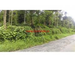 4 Acre Mixed Agriculture land for sale at Panaram - Wayanad