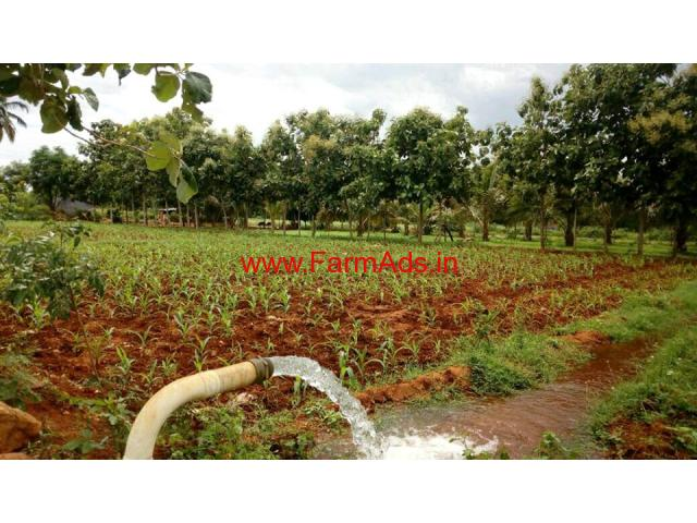 6.5 Acre agriculture land for sale in near Vathalakundu.