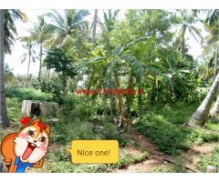 4 Acre Farm Land for sale at veerappanaikanpatty - Harur
