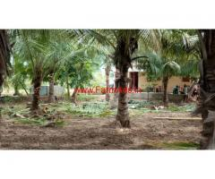 8.50 Acres Mango and Coconut Farm for sale near Tirupathi