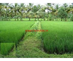 Half  Acre Agriculture Land for sale at Bhimavaram - Lanchila Revu