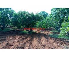 2 acres beautiful farm - Agriculture land for sale near shoolagiri.