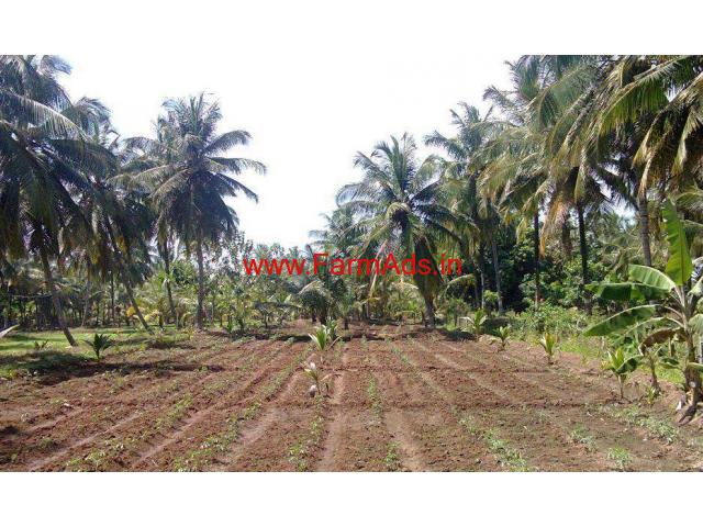 5 09 Acres Coconut Farm with Farm House for sale at Chittur