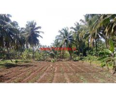 5.09 Acres Coconut Farm with Farm House for sale at Chittur - Pallakad
