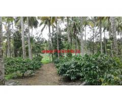 35 Acres Coffee Estate for sale at Periyapatna