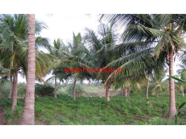 3 Acers of cultivated agriculture land near Chamrajanagar