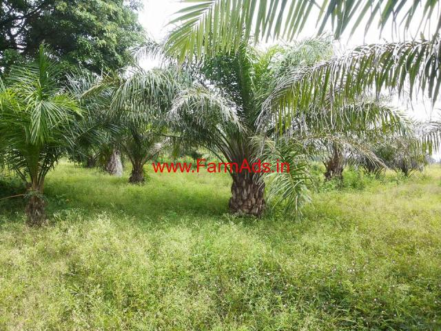 15 Acre Agriculture Land for sale in Shimoga