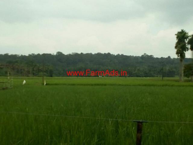 6 Acres Farm Land for sale at Panamaram - Wayanad