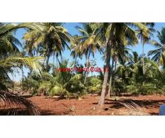 6.12 Acres Farm land for sale 5 KMS from Nanjangud