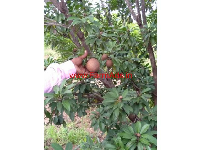 6.80 agricultural farm house available for sale at GowriBidanur