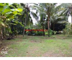 50 cents converted land for sale at padigara 3km from perdoor