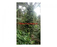 For Sale : 1.5 Acres Farm Land at Kodaikanal