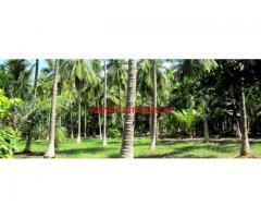 16 Acre Farm Land for sale at Tirunelveli