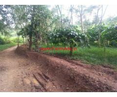 1 Acre Farm Land for sale at Wayanad - Vengapally