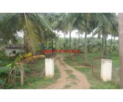 8 Acres Coconut Farm for sale at Chittur - Palakkad