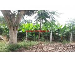 1.30 Acres Farm land for sale close to Mysore.