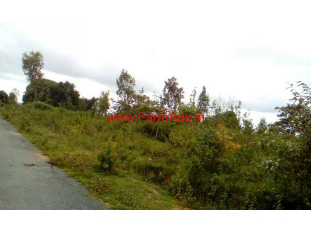 1.34 acres(74 gunte) Agriculture land for sale at Vaginakere - Belur